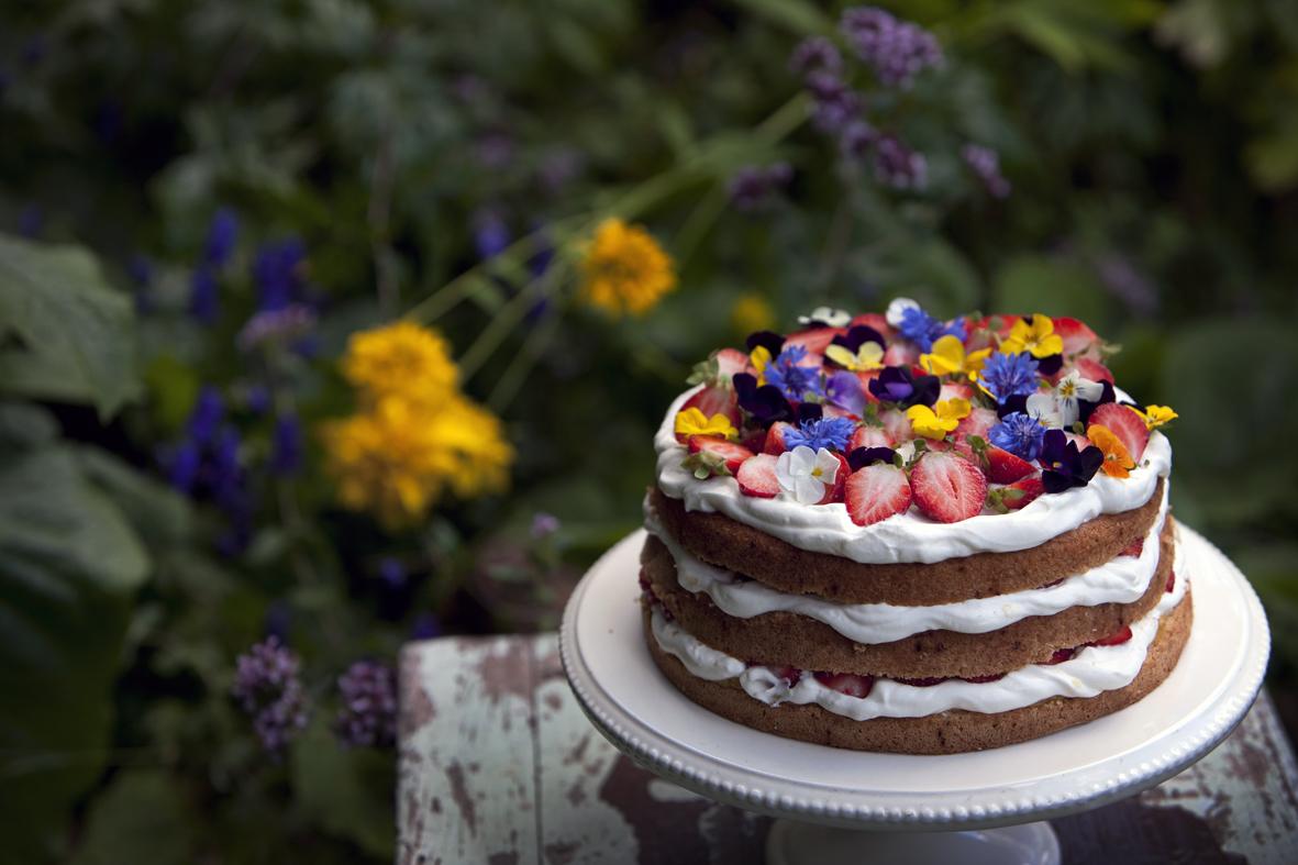 Kakku_kuvaaja Timo Viljakainen